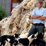 NFU backs 'much-needed' wool insulation campaign