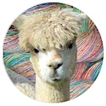 Logo for The Alpaca Spinner