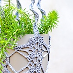 Crocheted trailing plant pot hanger / holder by Sue Doran