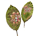 Vibrant botanic embroideries embellish the dried leaf sculptures