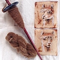 Alpaca on spindle